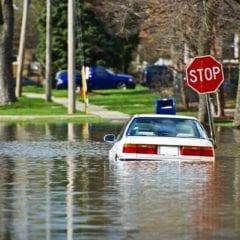 ¿Qué debo hace si entró agua a mi carro?